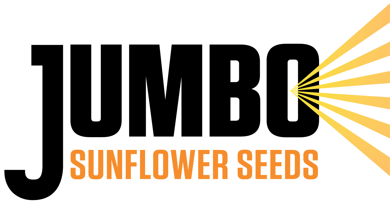 Jumbo Sunflower Seeds